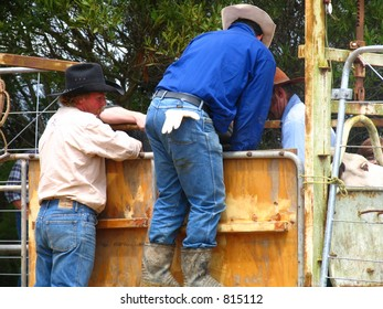 Saddling up in the rodeo