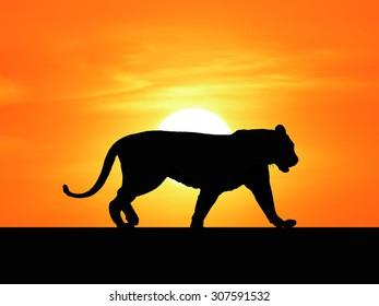 Safari in Africa. Silhouette of wild animals