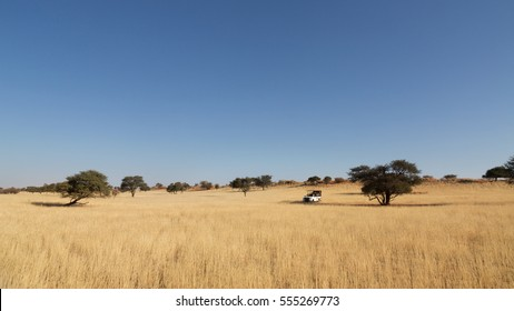 Safari with cross-country vehicle in Kalahari desert, Namibia