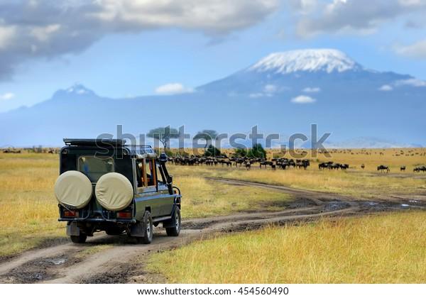 Safari game drive with the wildebeest, Masai mara reserve in Kenya, Africa