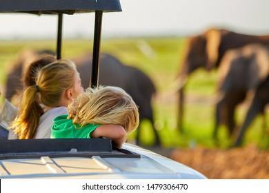 Safari Urlaub. Blond-Kinder, die afrikanische Elefanten vom Dach eines Safari-Autos aus beobachten.  Familie auf Safari Urlaub im Amboseli Nationalpark. Tierfotografie in Kenia, Tansania.