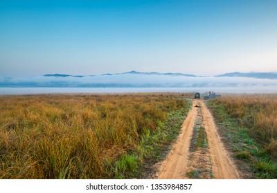 Safari path in Jim Corbett National Park, India
