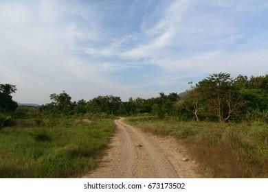 Safari tour to watch wild elephant, visitors must go through dirt road by pickup vehicle, Kui buri National Park, Prachuap Khiri Khan, Thailand