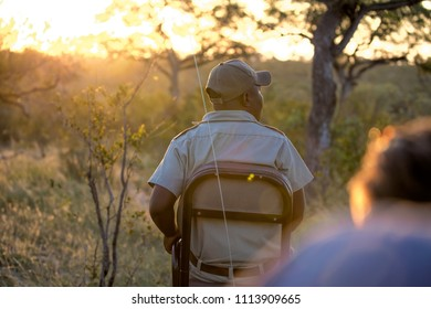 Safari tracker on game drive