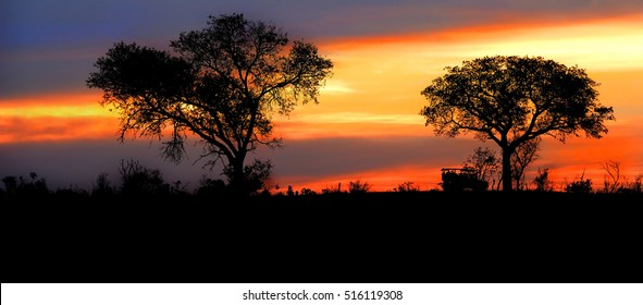 Safari vehicle traveling down a road at sunset between two silhouetted trees and the sun giving off a warm glow