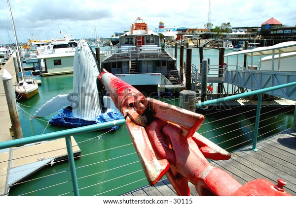 Safe harbour, Marina in Queensland, Australia 1