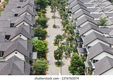 safe neighborhood suburban homes with green trees and palms