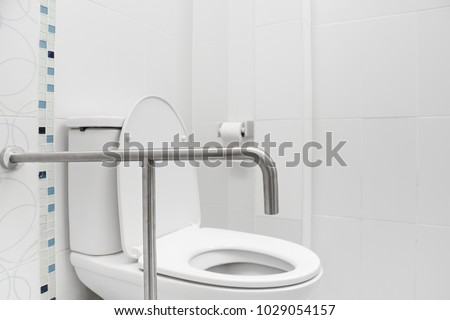 Safety Grab Hand Rails Toilets Stock Photo (Edit Now) 1029054157