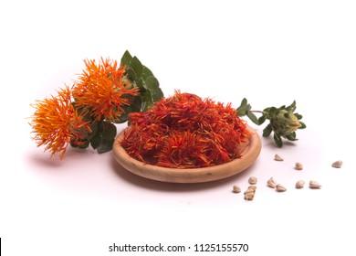 Safflower latin name Carthamus tinctorius or fake saffron on a white background