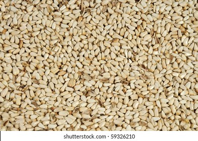 Safflower seeds close up as background