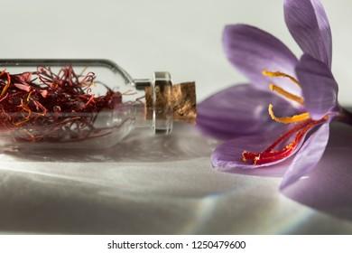 Saffron flower and dried saffron spice in a bottle , macro detail