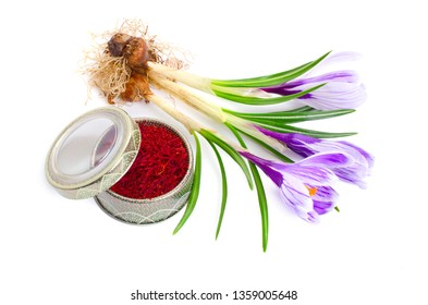 Saffron is a spice derived from the flower of Crocus sativus, commonly known as the saffron crocus. Isolated on white background.
