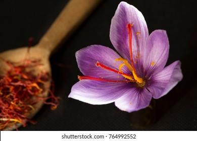 Saffron in a spoon on a dark background