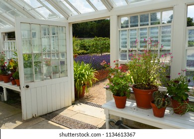 SAFFRON WALDEN, ESSEX, ENGLAND - JULY 14, 2018: Historic restored Greenhouse interior with flowers and open door .