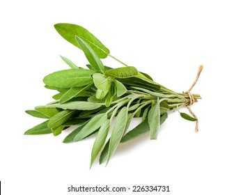 Sage bunch with cord isolated on white background