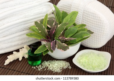 Sage herb leaf varieties in a porcelain mortar with pestle, white towels, towel sponge, coral shell, aromatherapy spa essential oil bottle and bath salts over bamboo background.