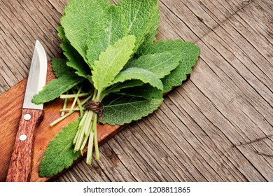 Sage herb on a cutting board.Herbal medicine.Healing herbs