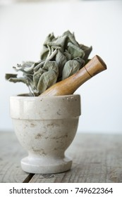 Sage sitting in mortar and pestle