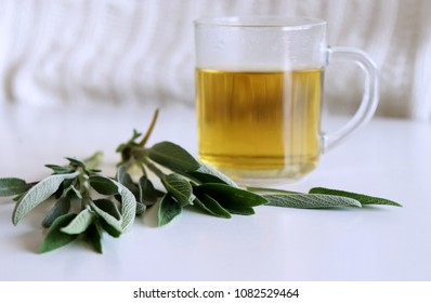 Sage tea and sage leaves. Infusion made from sage leaves. Medicinal herb Salvia officinalis. The concept of healthy nutrition.