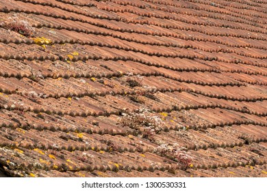 Sagging rustic French roof tiles, full frame construction background texture