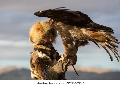 SAGSAY, MONGOLIA - SEP 28, 2017: Berkutchi - Eagle Hunters traditional clothing, while hunting to the hare holding a golden eagles on his arms in desert mountain of Western Mongolia.