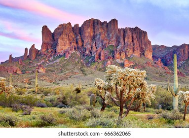 Saguaros at Sunset in front of Superstition Mountains. Sonoran Desert near Phoenix.