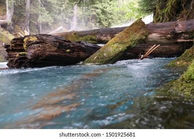 Sahalie Falls McKenzie River Trail