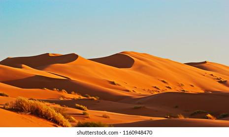 The Sahara of Algeria
