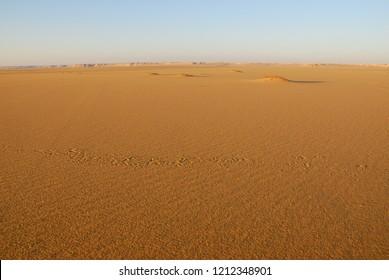 Sahara desert beautiful landscape nearby Dakhla oasis in Egypt at sanset. Africa