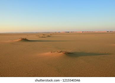 Sahara desert beautiful landscape nearby Dakhla oasis in Egypt at sunsert, Africa