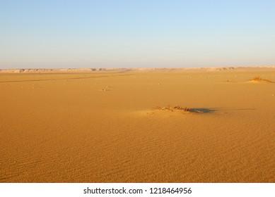 Sahara desert beautiful landscape nearby Dakhla oasis in Egypt at morning light. Africa