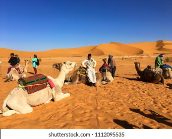 Sahara Desert, Beni Abbes, Bechar, Algeria - November 2, 2017: A local Algerian boy is posing on camel just before the desert safari.
