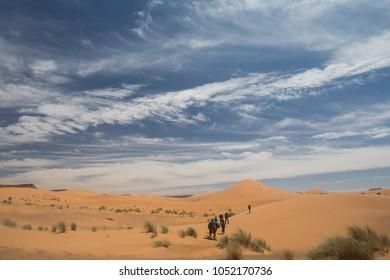 Sahara desert with camel caravan. People trekking in desert with camel