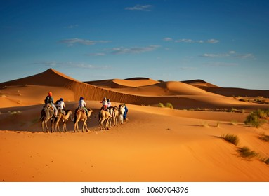 Sahara desert camels trekking tours with berbers adventure dromadaires riding and berber guiding excursion  in Merzouga Dubai, Oman, Bahrain Morocco or Kuwait dunes safari