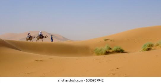 Sahara desert.  Morocco