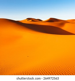 Sahara Desert, Sand Dunes at Sunset