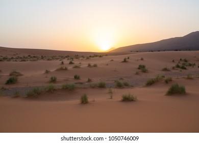 Sahara desert sunset. Morocco