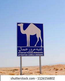 SAHARA DESERT TUNISIA 10 27 2007:  Animal Crossing Sign Dromedary Camel  Road Sign  In Sahara Desert Near Tozeur, Tunisia