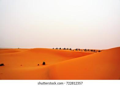 The Sahara, Morocco