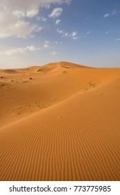 Sahara, Morocco, Africa