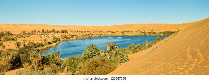 Sahara Oasis Panorama - Gaberoun Lake, Libya