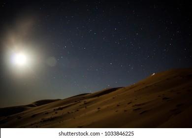sahara's night sky