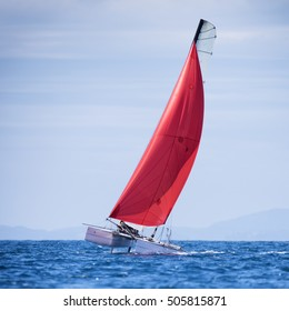 sail boat regatta