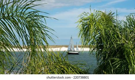 A sailboat entering the bay from the Gulf of Mexico through Perdido Pass at Orange Beach, AL.
