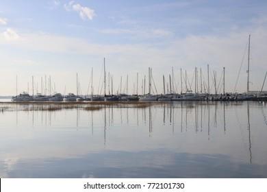 Sailboat Harbor Scene