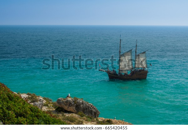 Sailboat on ocean and seagull