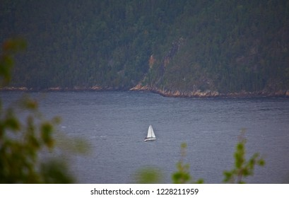 Sailboat on the Saint Lawrence  in Saguenay, Quebec, Canada