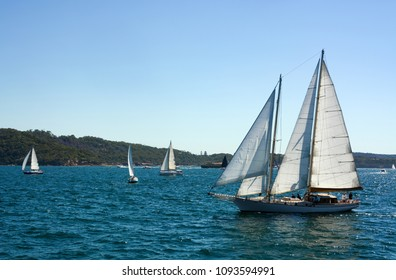 Sailboat with open sails cruising over choppy water in Sydney Harbor, Australia