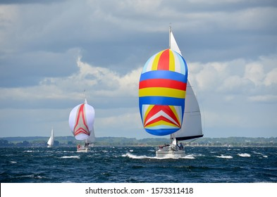 sailboat race with spinnaker sea