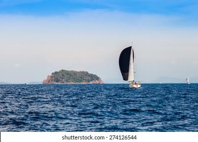 Sailboat sailing in the  sea